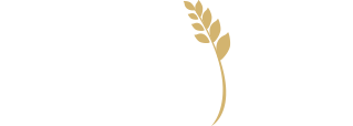 Provision Wealth Management